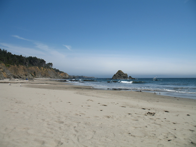 beach at anchor bay campgrounds