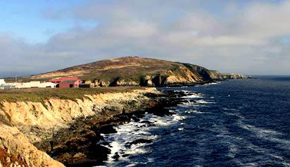bodega marine lab
