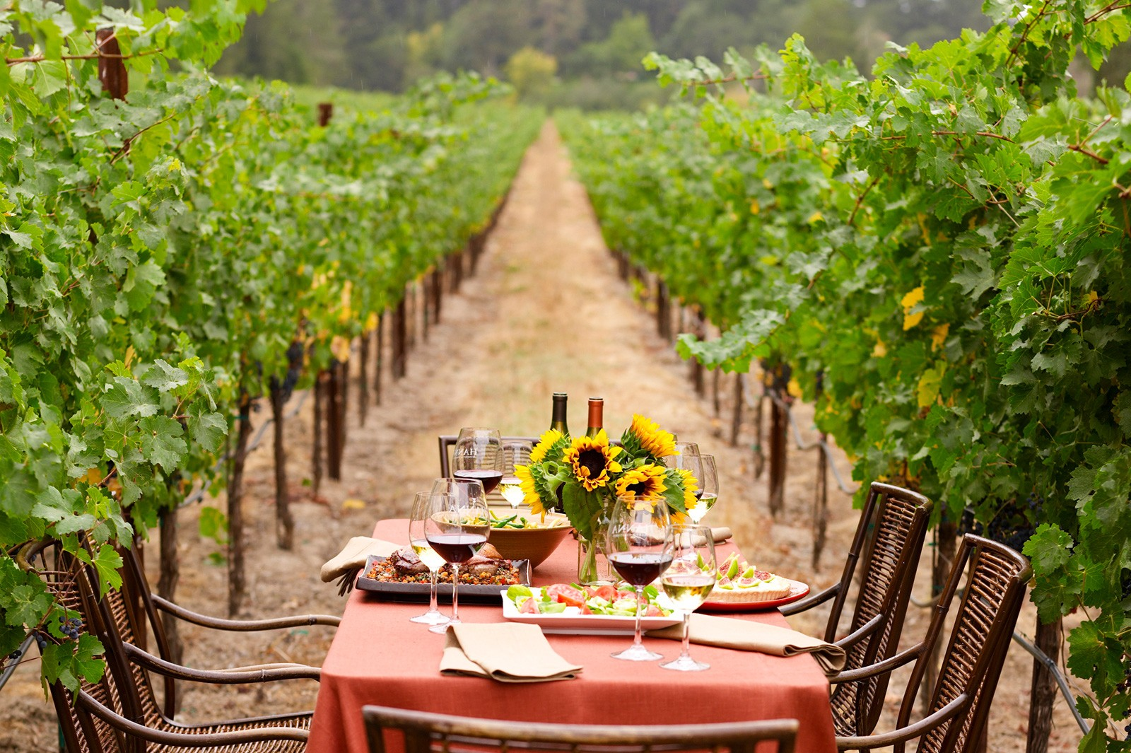 hanna winery - russian river valley