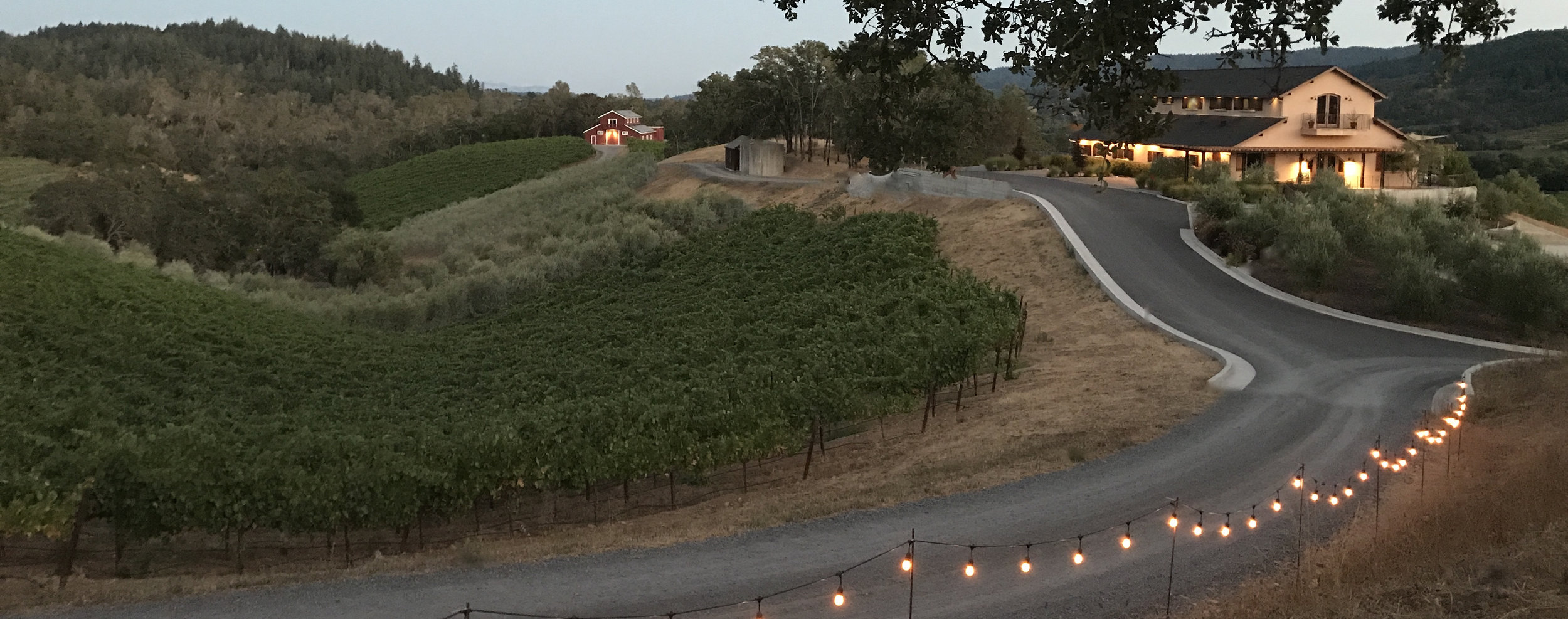 trattore farms winery
