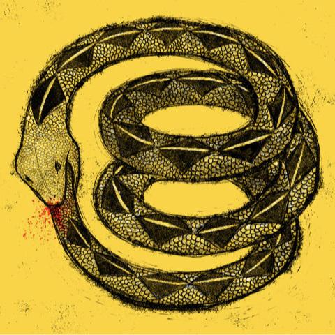 Illustration: Jim Cooke
