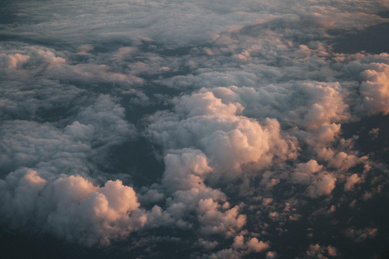 Flight__1.jpg