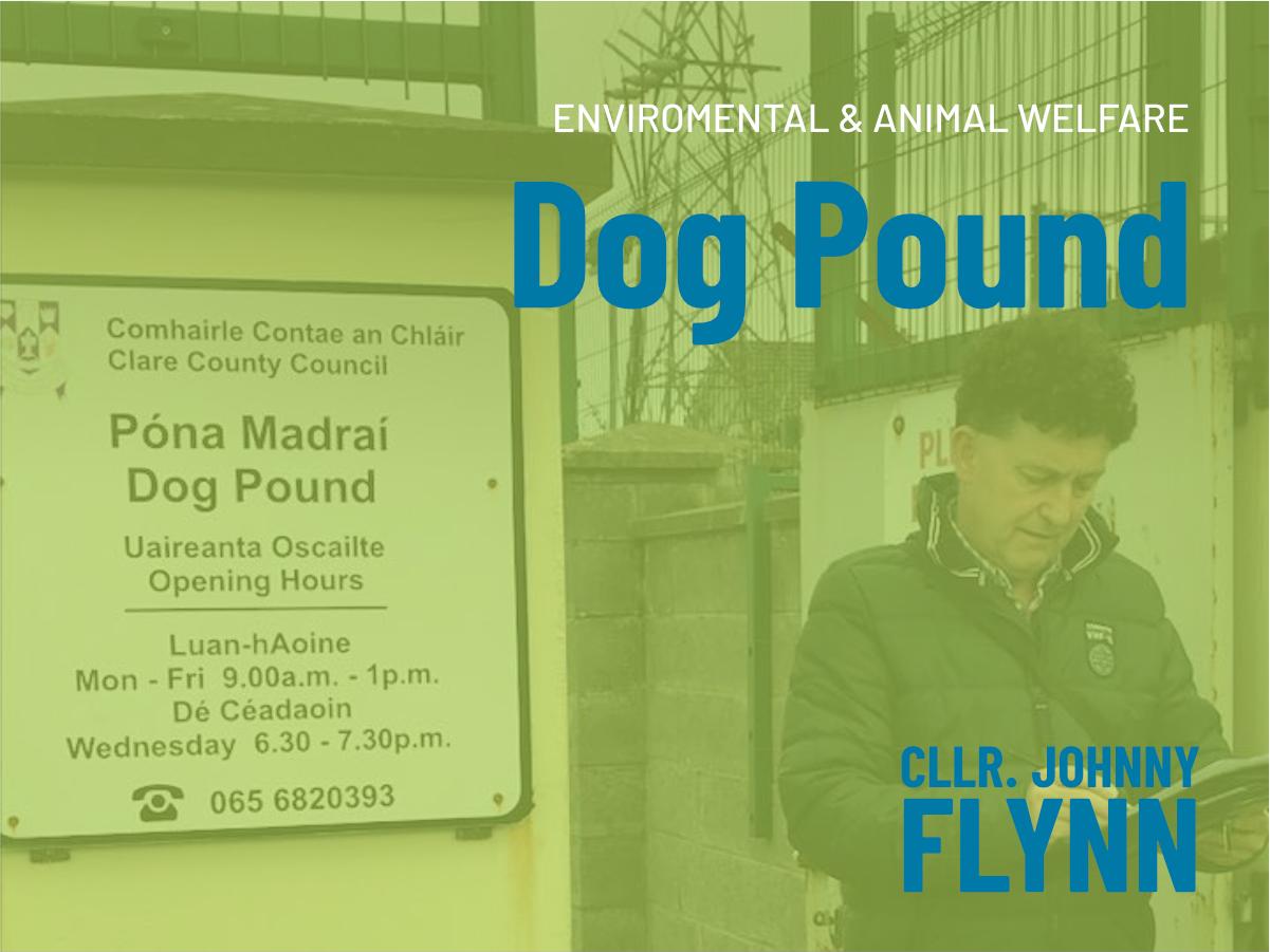 Dog Pound Cllr. Johnny Flynn