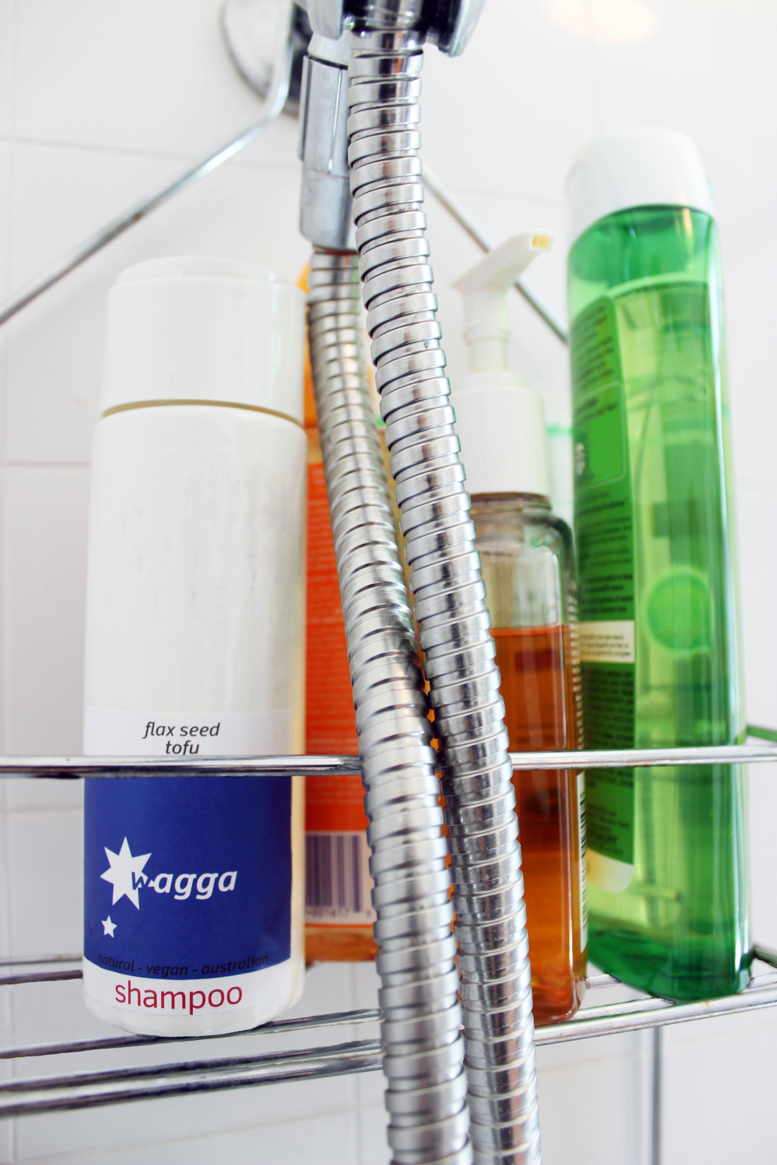 ShampooShailongcreative.com
