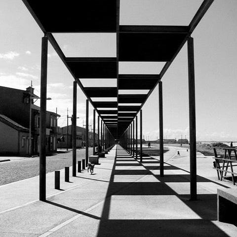 Pergola pergola pergola 💚#pergola #buildingpergolas #pergolastructure #pergolalove