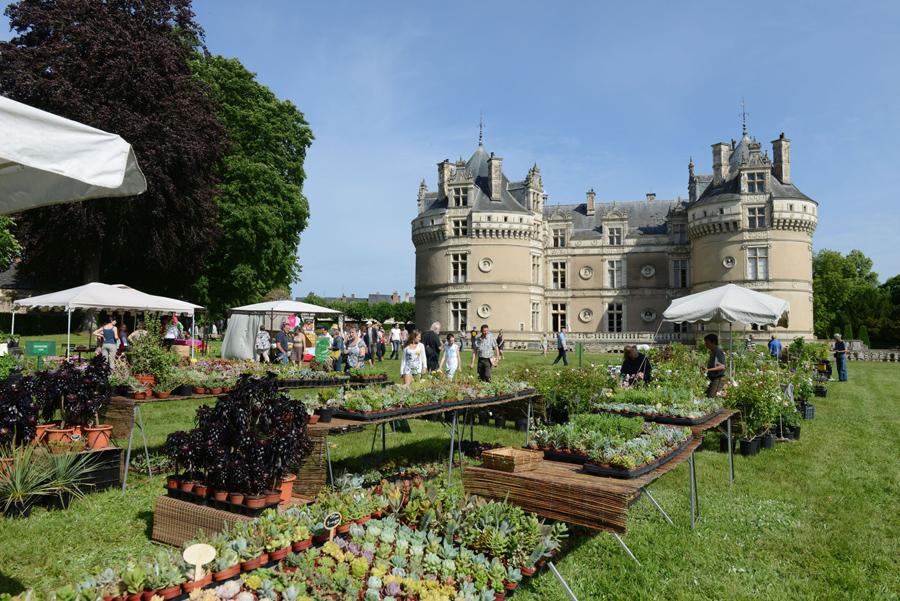 Chateau du Lude.jpg