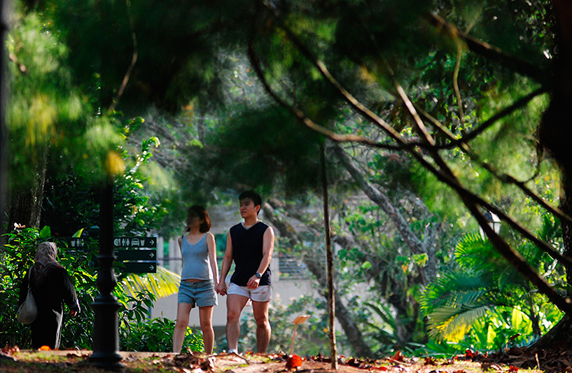 Botanic Garden - Courtesy of the Singapore Tourism Board, Photo: Ryan Tan