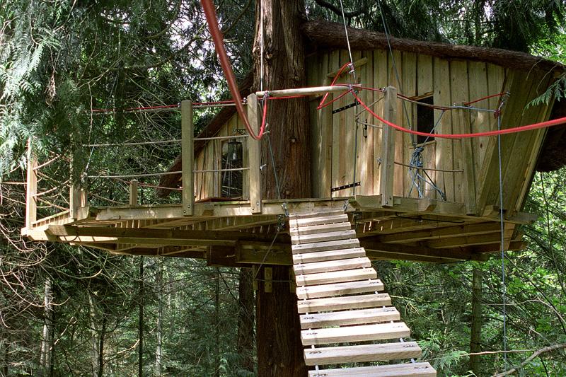 sequoiapasserelle.jpg