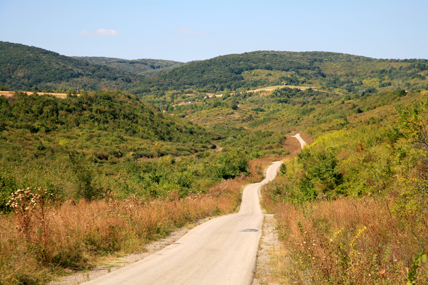 Paysage des monts de Fruska Gora