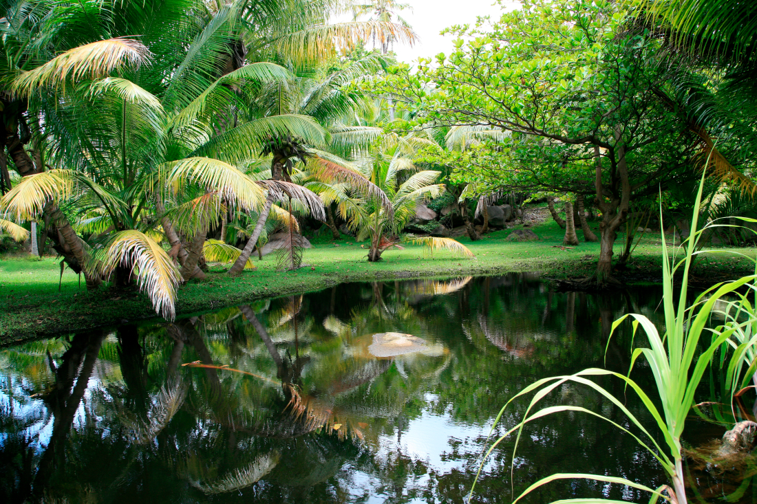 ...une petite île privée et calme