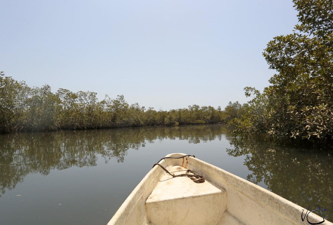 Sur les rives du fleuve Gambia