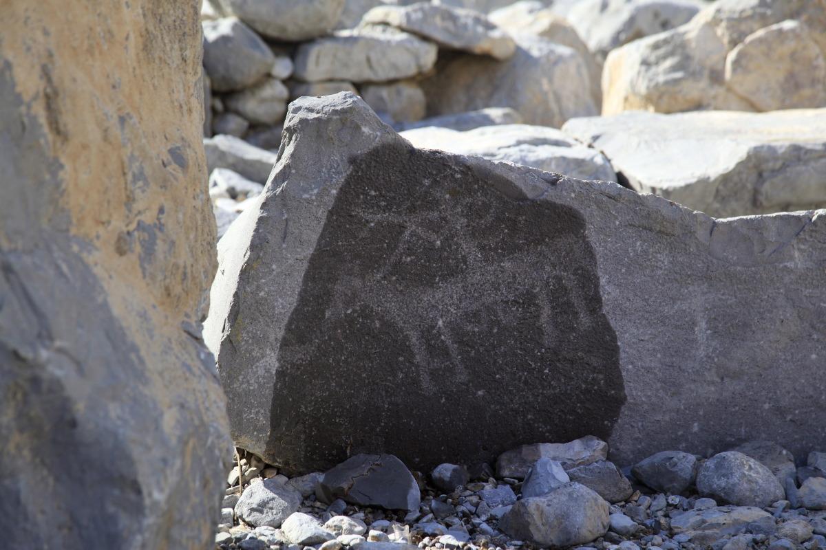 Tout près de Khasab, des roches gravées de pétroglyphes
