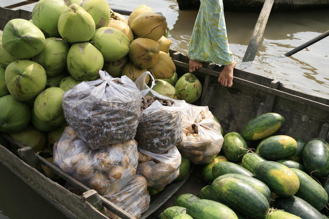 Noix de coco, papayes et tant d'autres fruits...