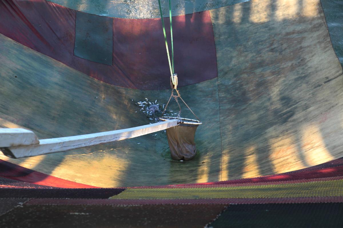 Trabucco : la longue épuisette pour recueillir les poissons dans le filet