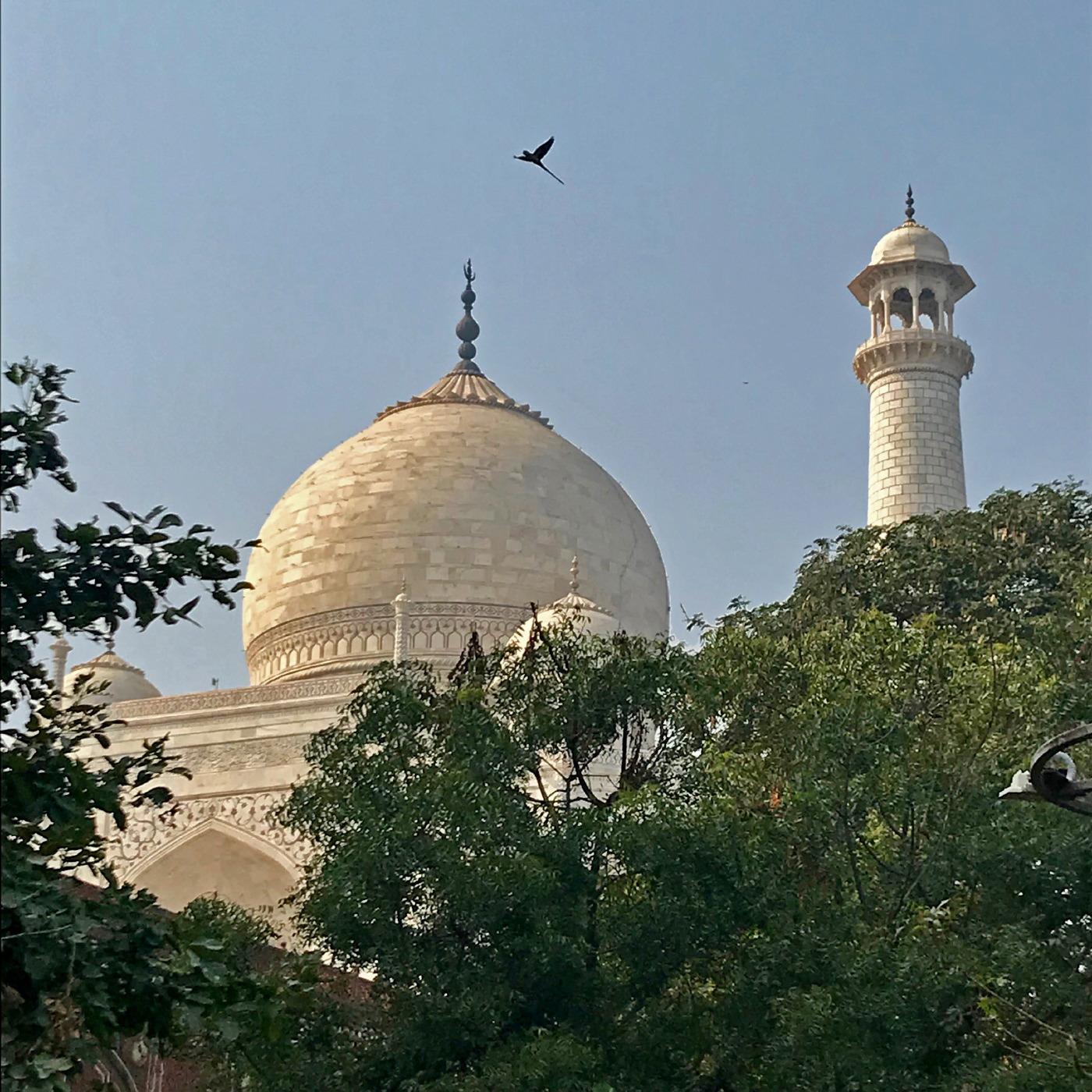 Agra (21 au 23 novembre)_17.JPG