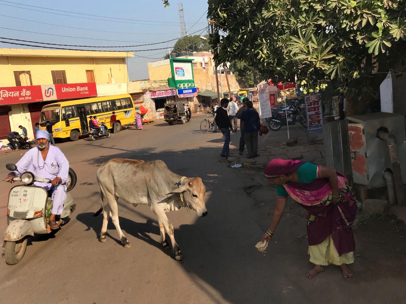 Gwalior (23 au 24 novembre)_2.JPG