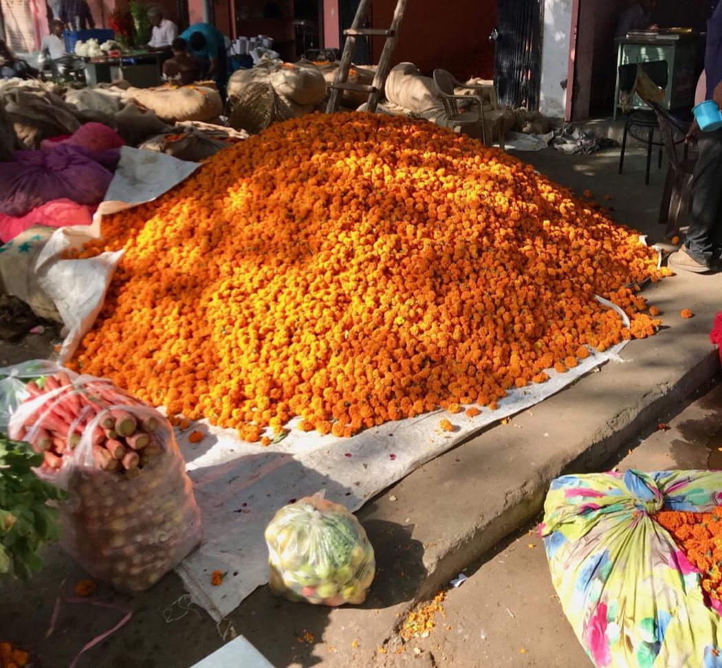 Jaipur (17 au 19 novembre)_4.JPG
