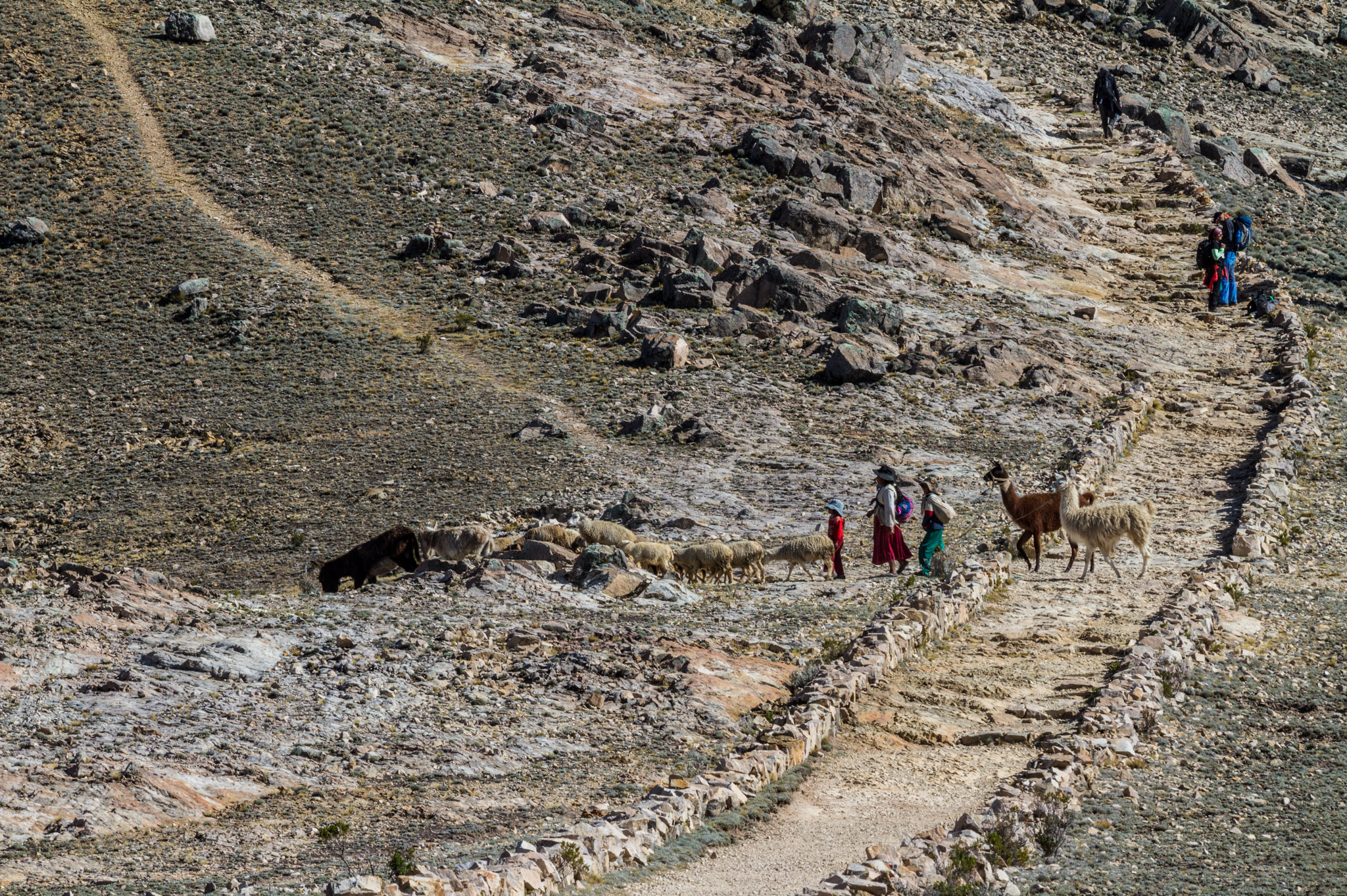 Ali-Barqawi-Studios-Explore-Series-Travel-Adventure-Documentary-C4CGAZA-Bolivia-Lake-Titicaca-2015-050.jpg