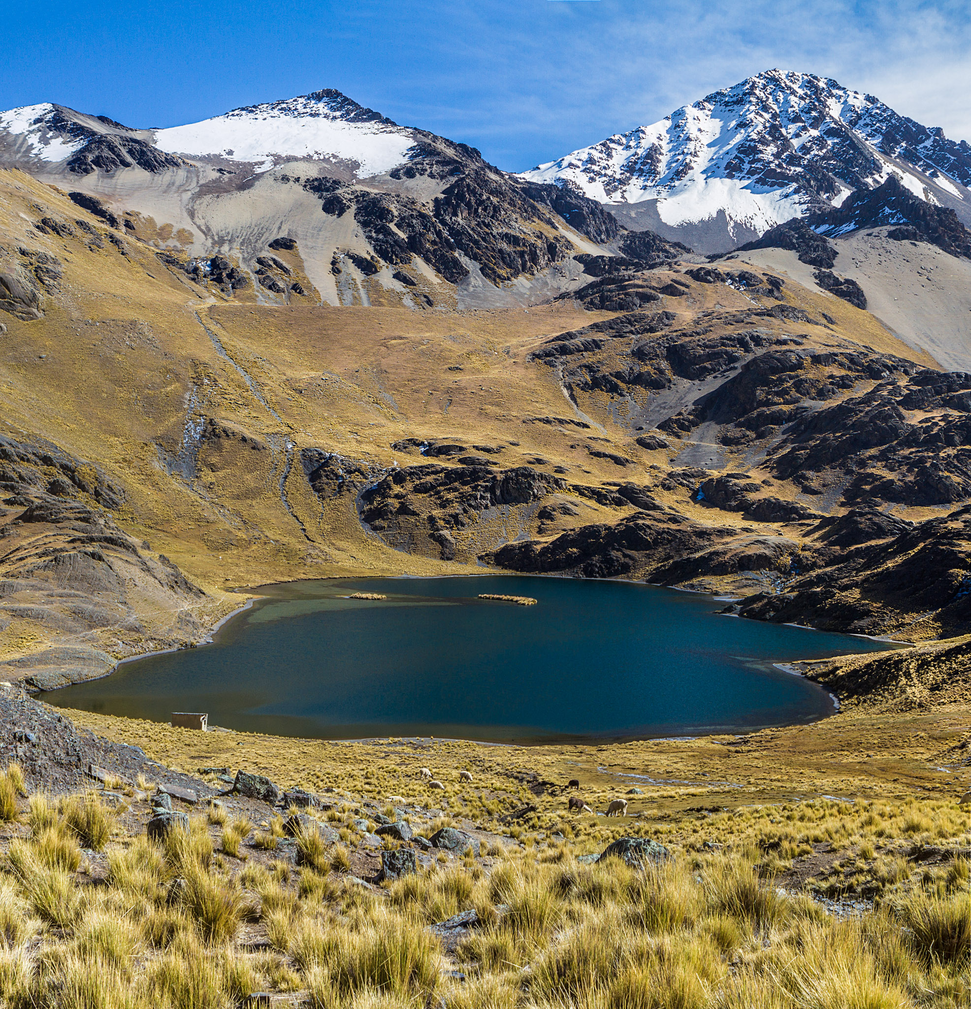 Ali-Barqawi-Studios-Explore-Series-Travel-Adventure-Documentary-C4CGAZA-Bolivia-Mount-Tarija-2015-244.jpg