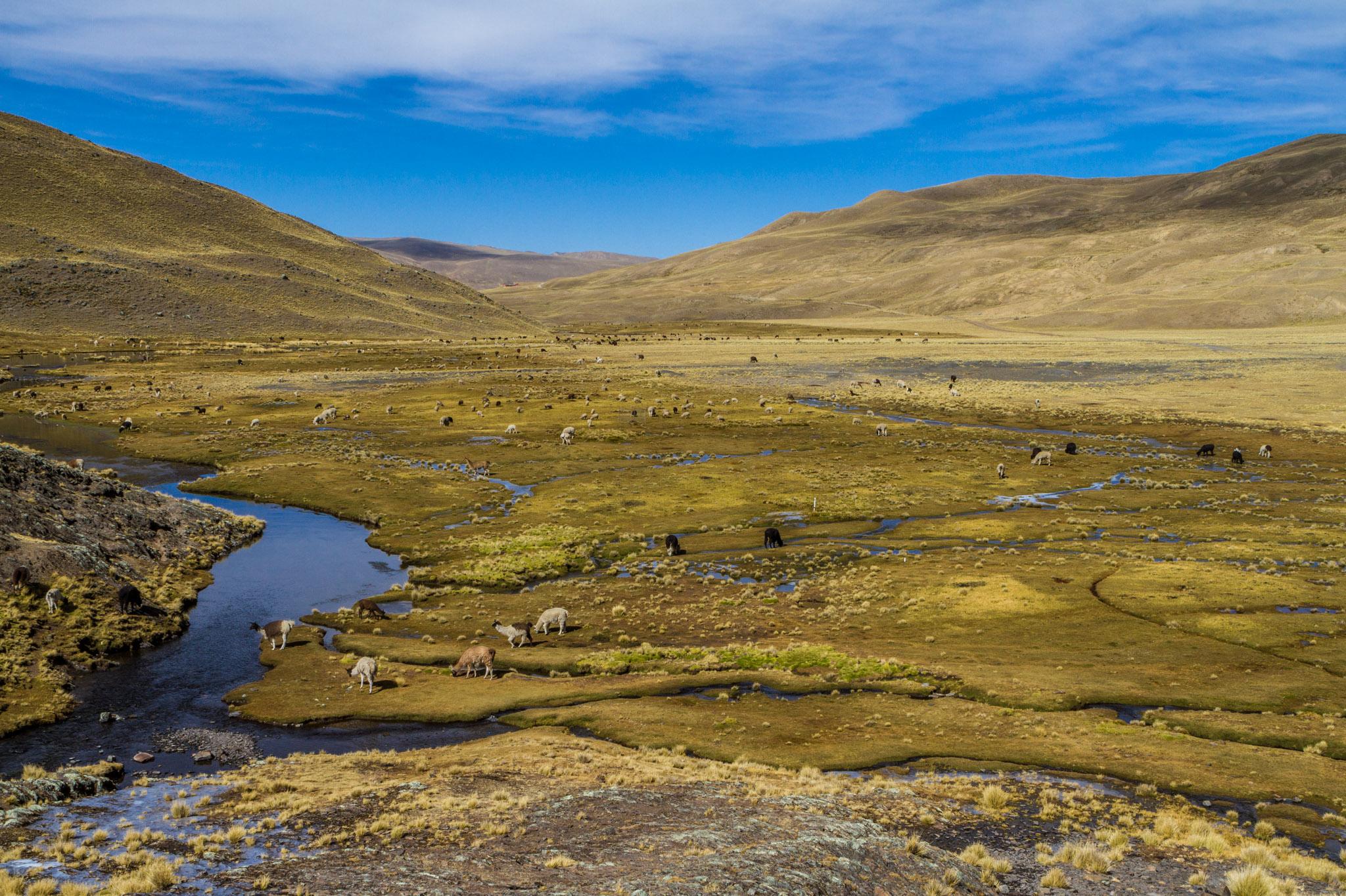 Ali-Barqawi-Studios-Explore-Series-Travel-Adventure-Documentary-C4CGAZA-Bolivia-Mount-Tarija-2015-248.jpg