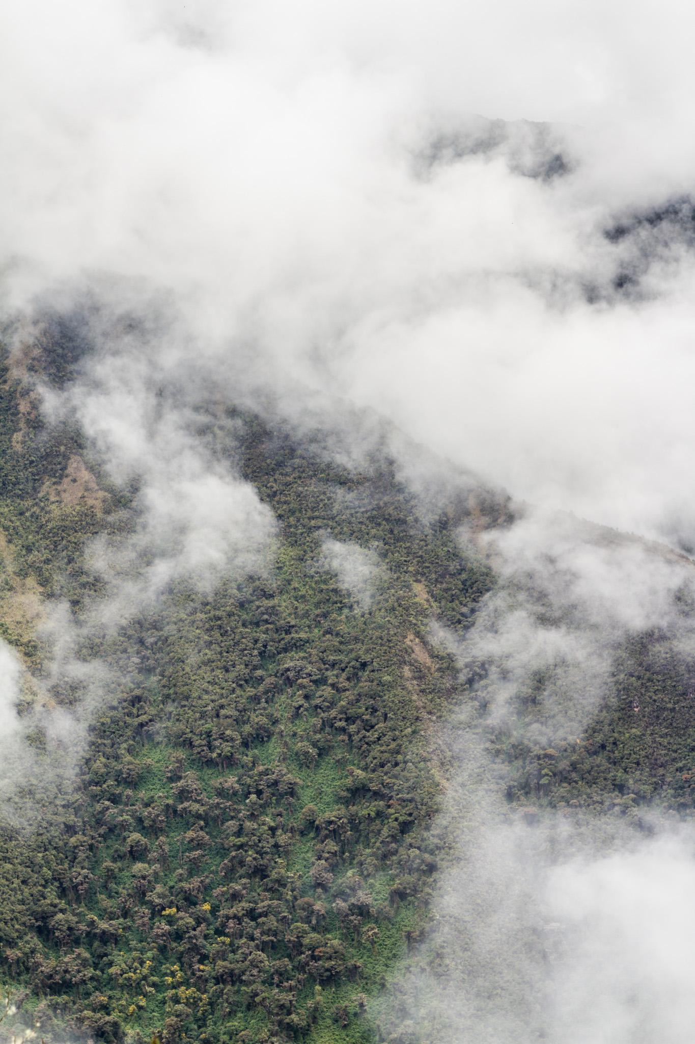 Ali-Barqawi-Studios-Explore-Series-Travel-Adventure-Documentary-C4CGAZA-Peru-MachuPicchu-2015-255.jpg
