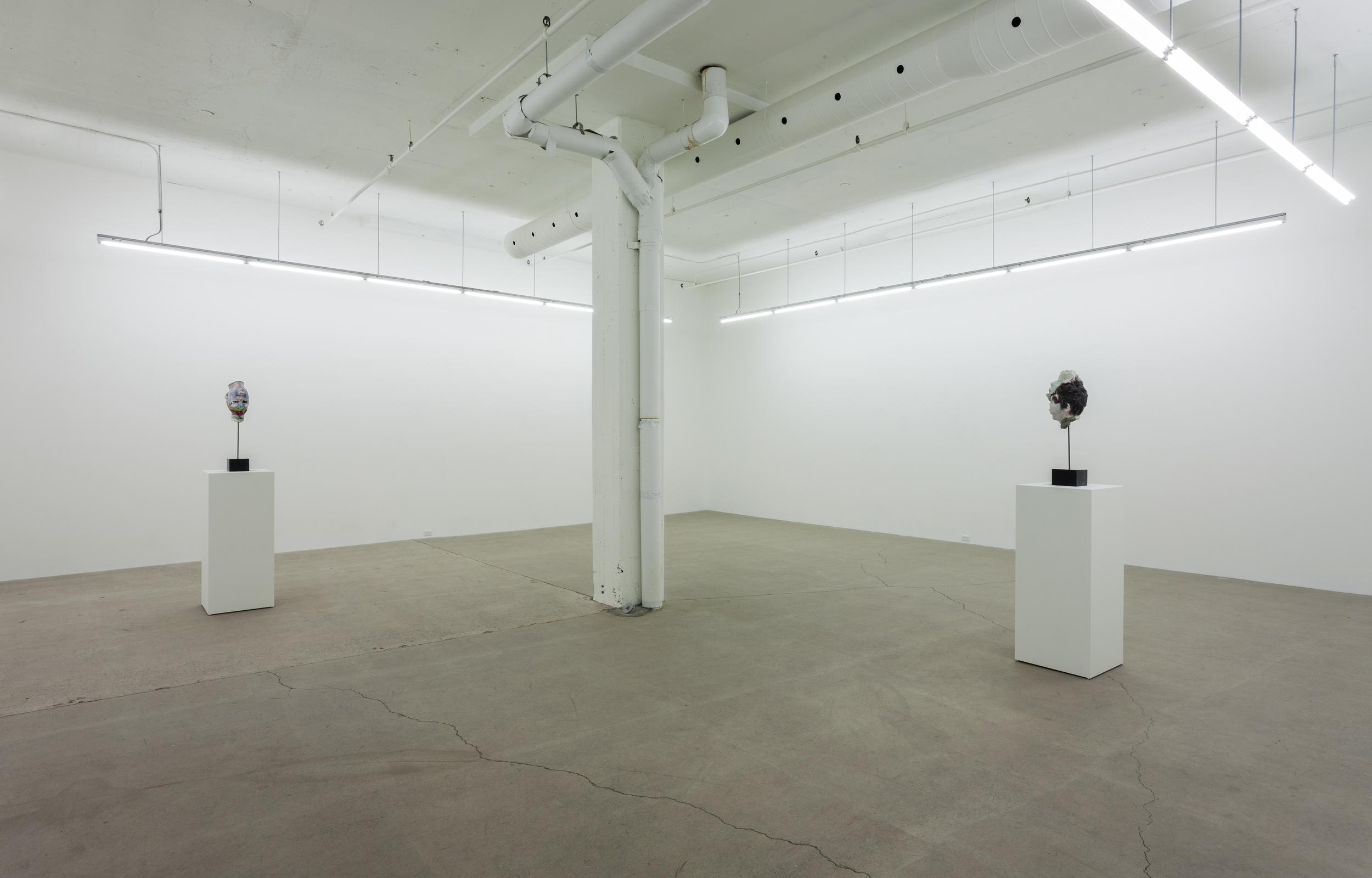 2015 - Galerie Rene Blouin - David_Altmejd_12.jpg