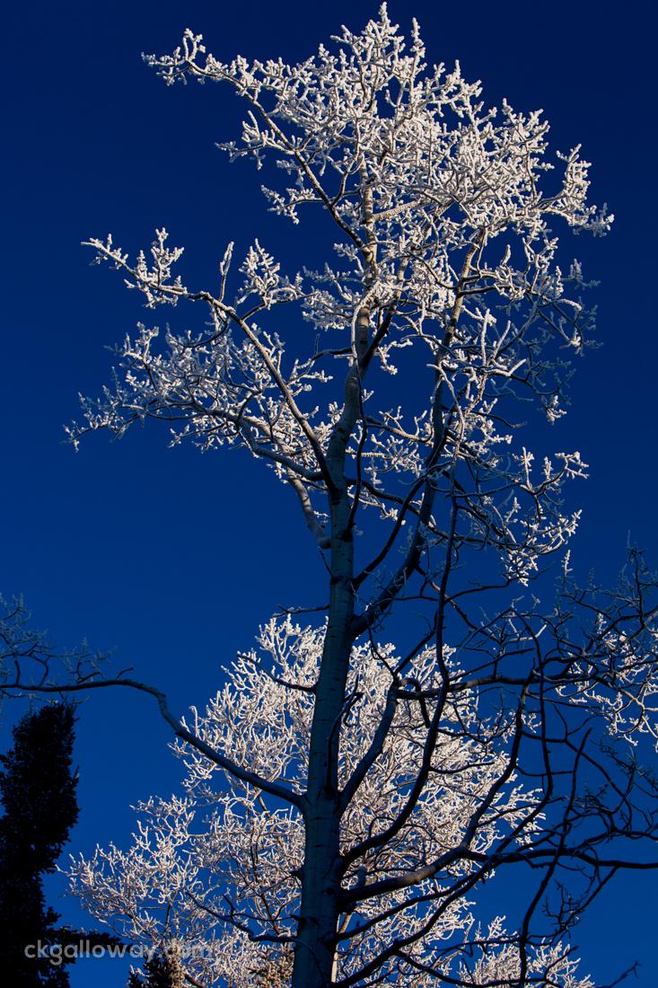 Ice-and-sky