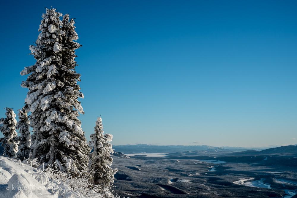 ckgalloway-grey-mountain-9215.jpg