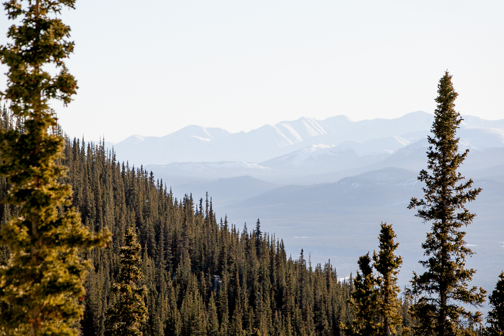ckgalloway-grey-mountain-5481.jpg