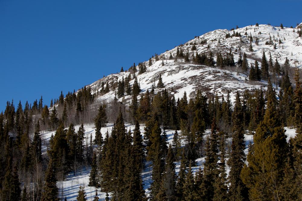 ckgalloway-grey-mountain-5489.jpg
