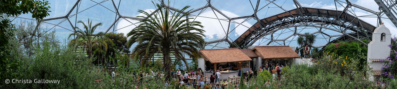Inside the Mediterranean biome. Photo by Christa Galloway.