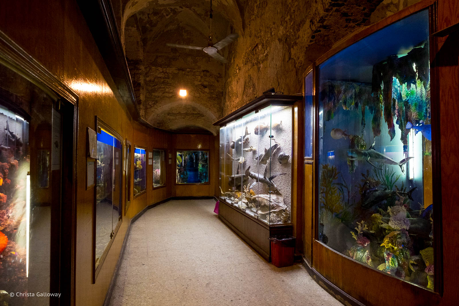 Displays at the Marine Museum in Alexandria. Photo by Christa Galloway.