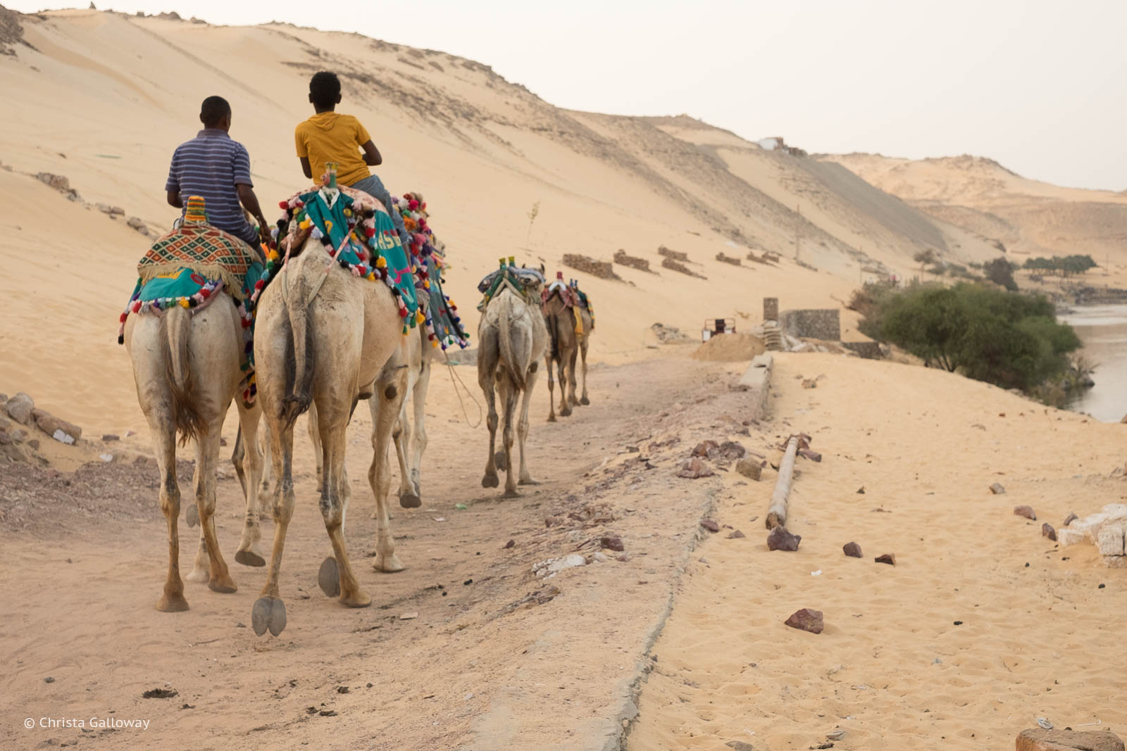 Nubian-Village-Aswan-Egypt-ckgalloway-6136.jpg