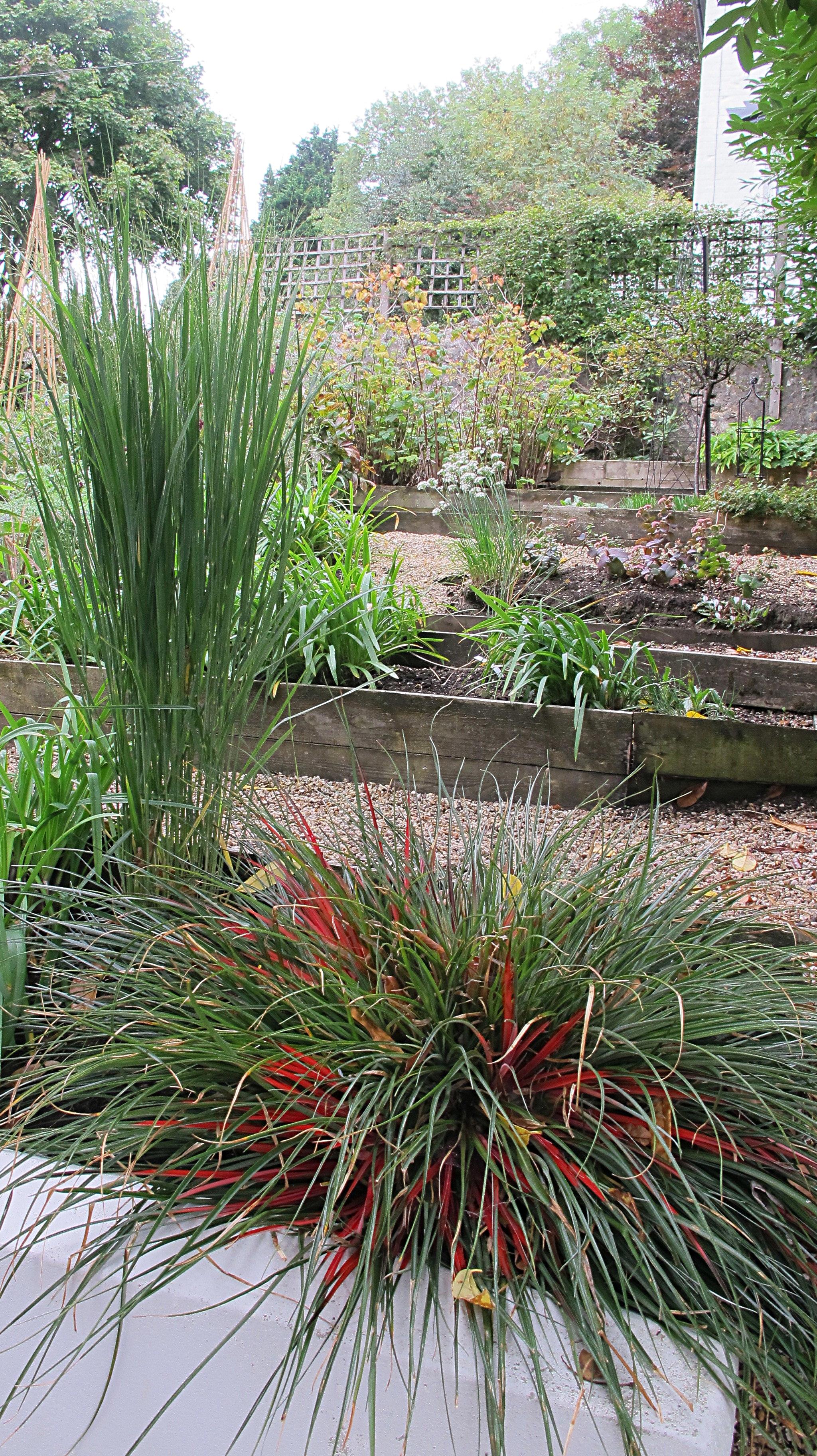 Garden-terraces-grasses-Cottage-Sanctuary
