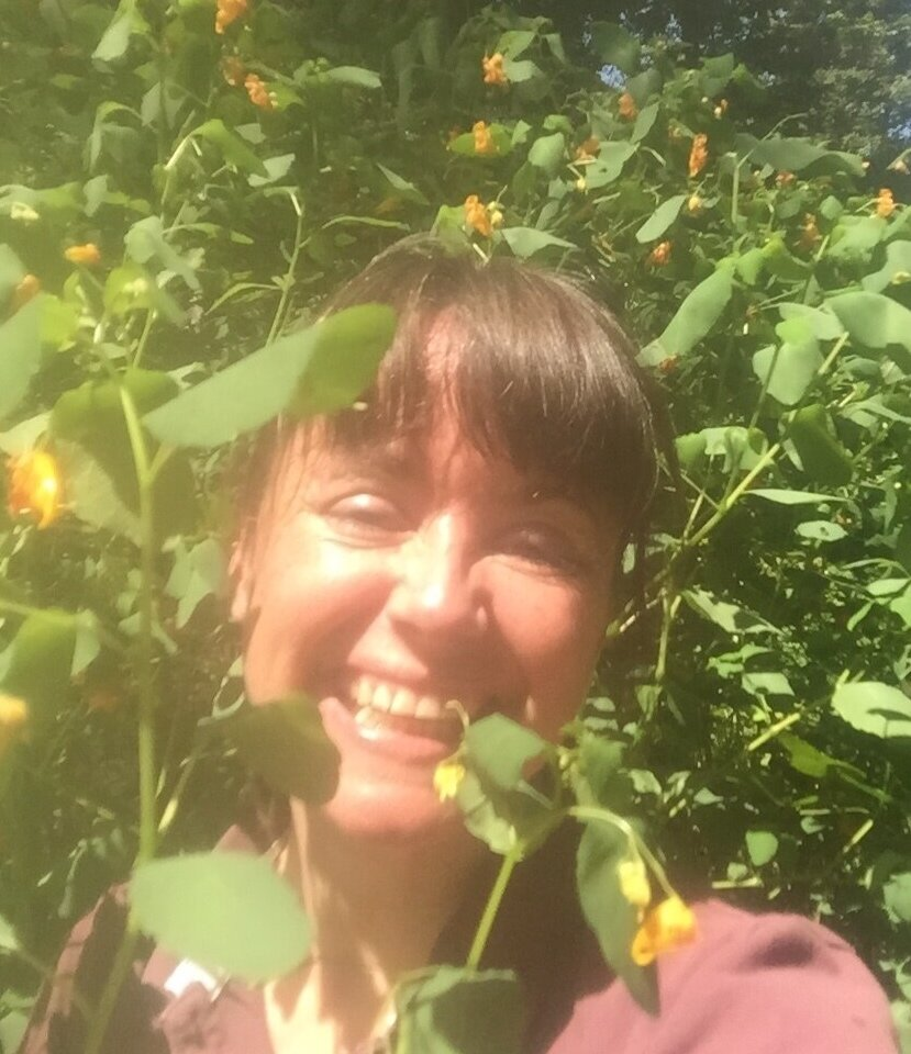 Eva found the mother-load of jewelweed!!