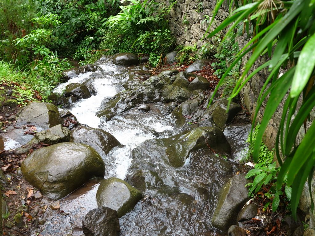 parque_municipal_do_monte_2_434.jpg