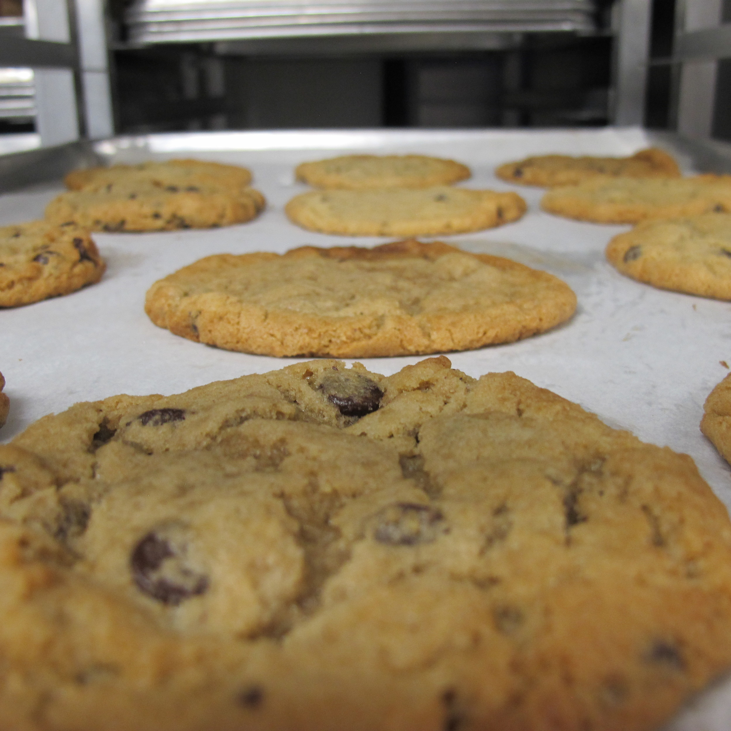 Our Famous Chocolate Chippers Hot out of the Oven