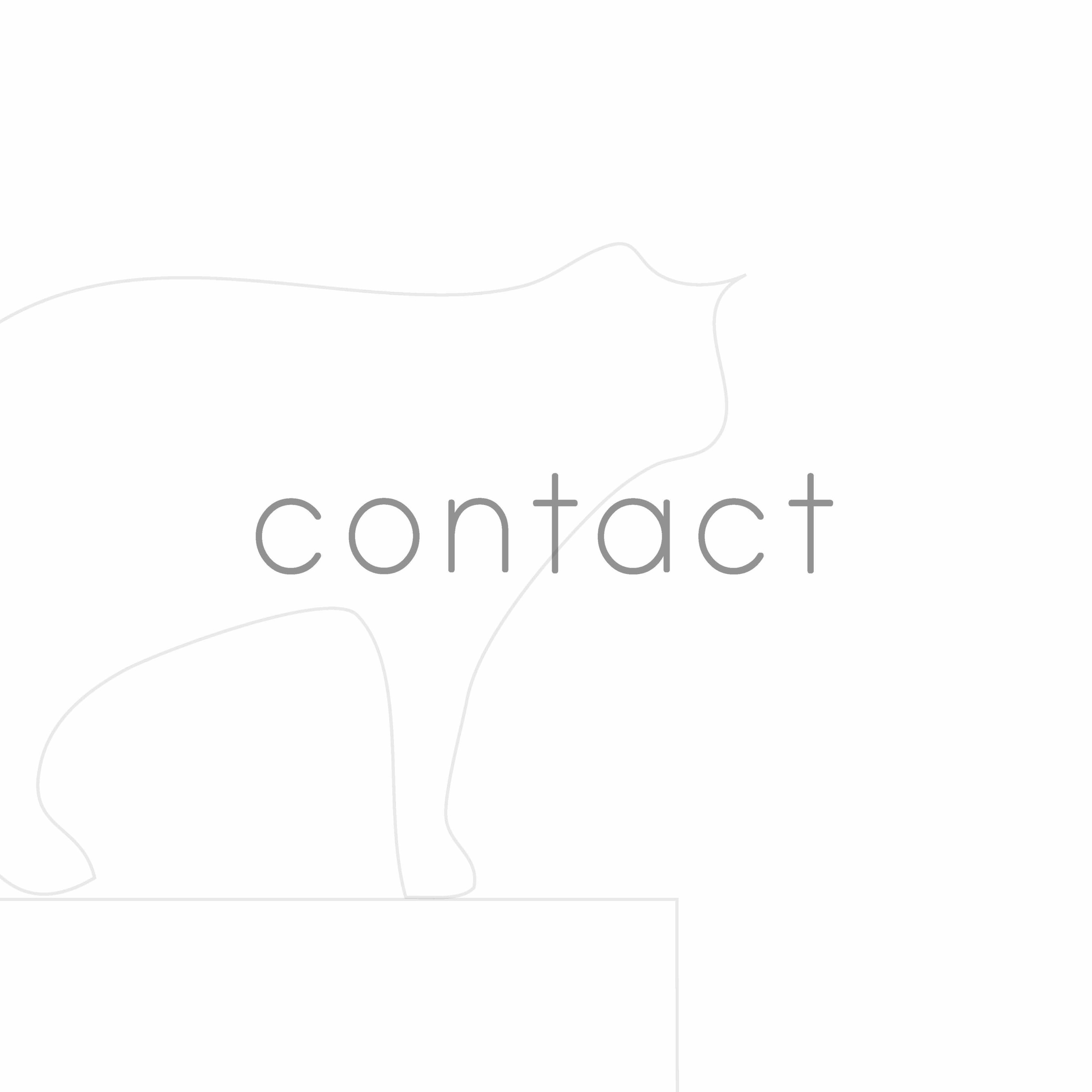 Squarespace-contact .jpg