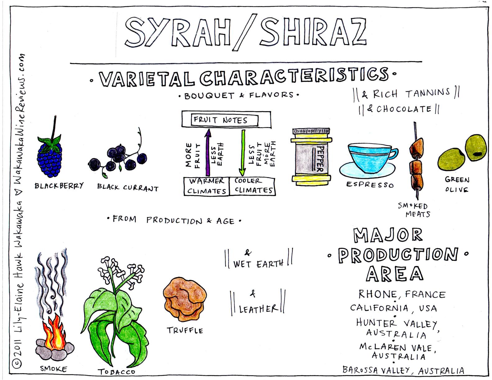 syrahshiraz.jpg