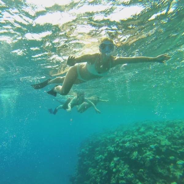 molly underwater.jpg