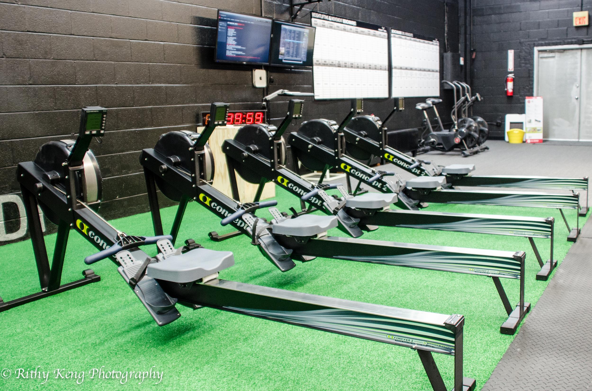 Rowers 2.jpg