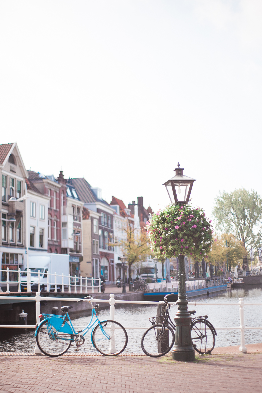 amsterdam_ (5 of 67).jpg