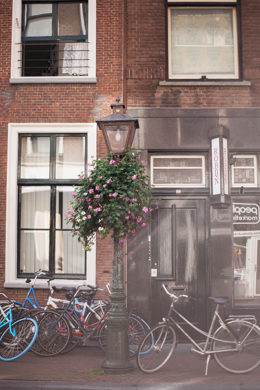amsterdam_ (16 of 67).jpg