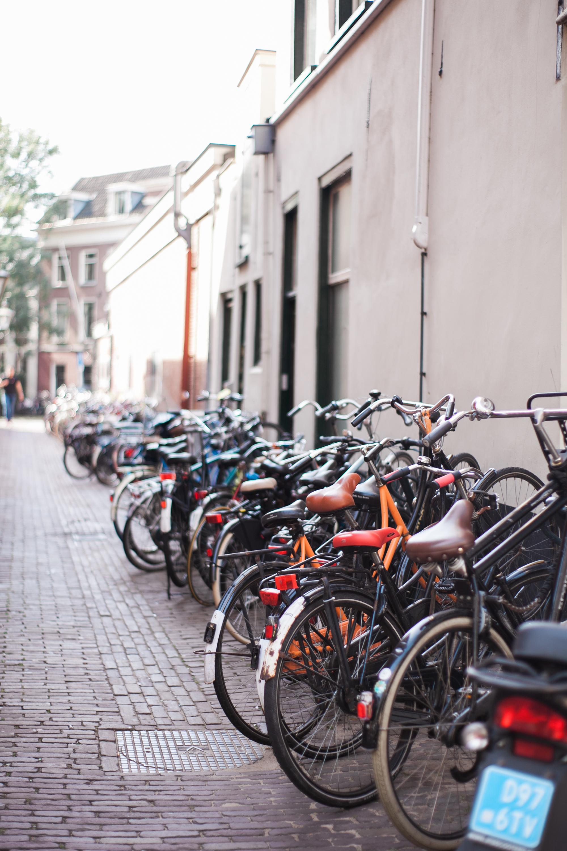 amsterdam_ (17 of 67).jpg