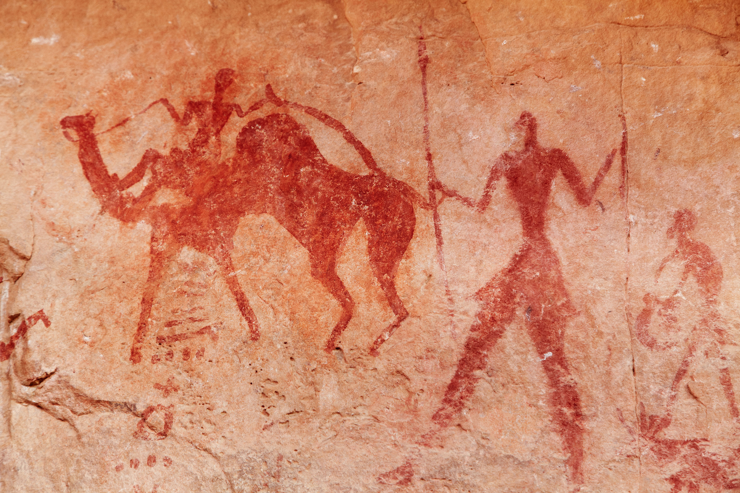 Rock art from Algeria.
