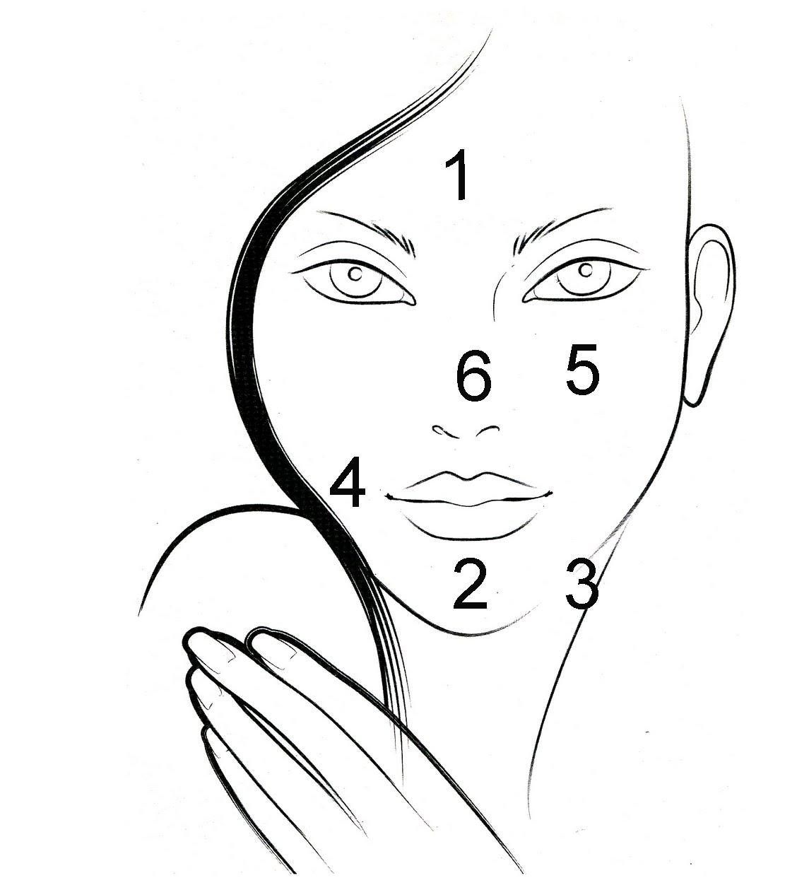 Face zones copy.jpg