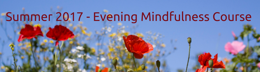Summer 2017 - Evening Mindfulness Course