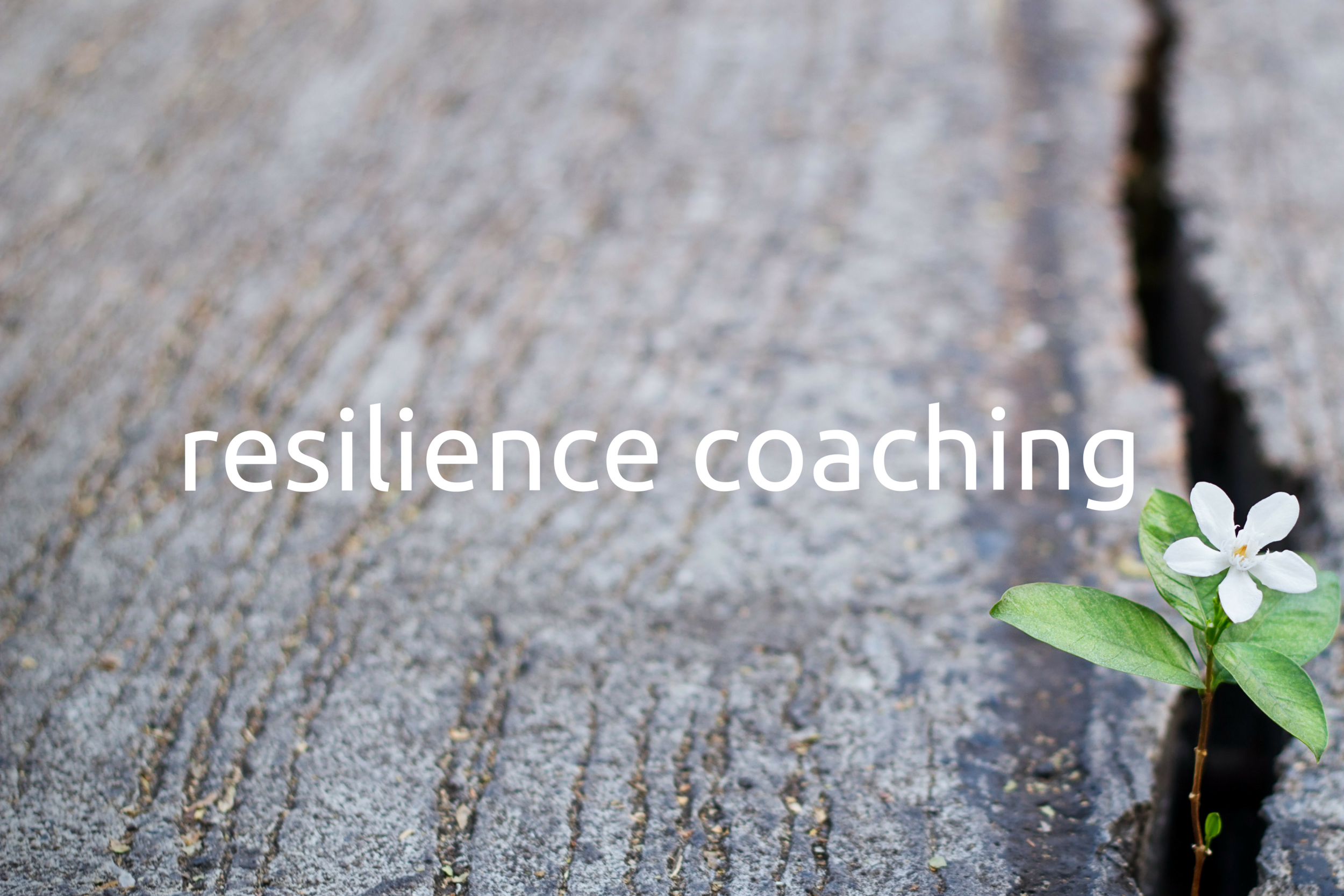 resilience coaching