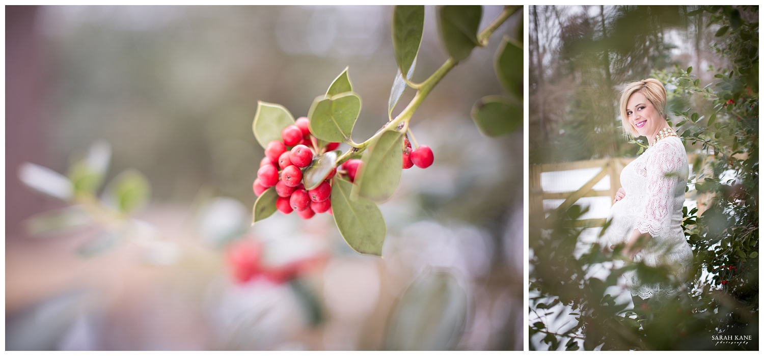 Emily's winter maternity session. See more pictures using the link below!