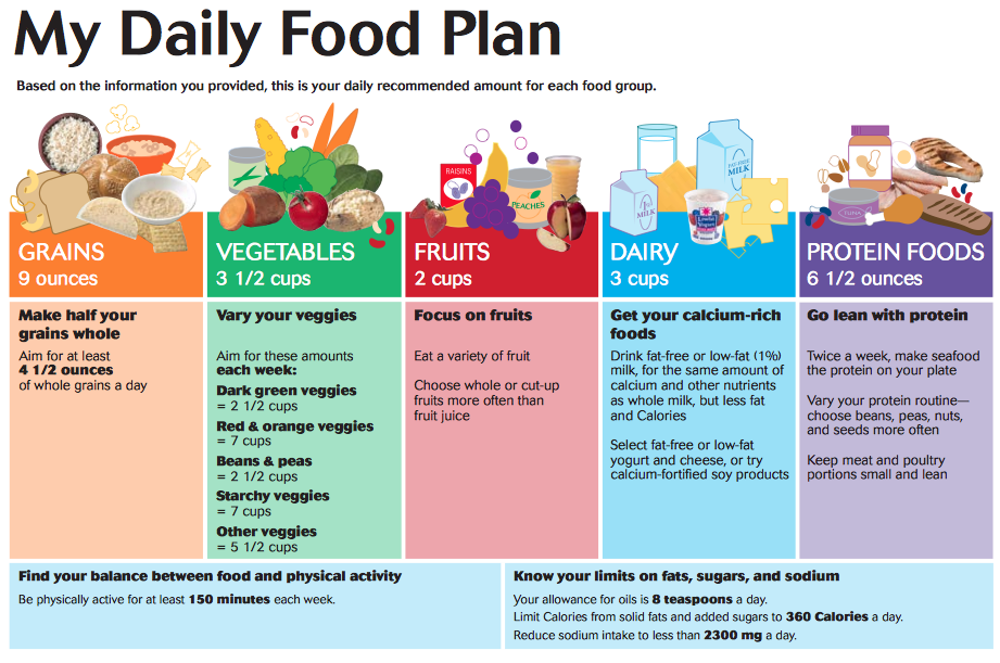 My Daily Food Plan : The United States Department of Agriculture outlines the types and quantities of foods to eat but how do we incorporate these foods into our lives to meet these requirements?